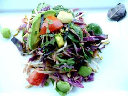 Zesty Cabbage Mung Sprouts with Avocado